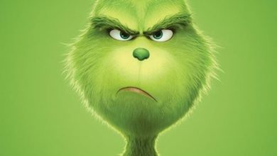 Photo of GRINCH
