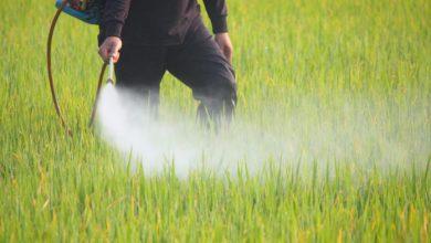Photo of Produžen rok valjanosti identifikacijske iskaznice za sigurno rukovanje pesticidima na 6 mjeseci!